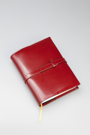 Купить Ежедневник-портфолио NAZARENOGABRIELLI XX05452RM9CH71